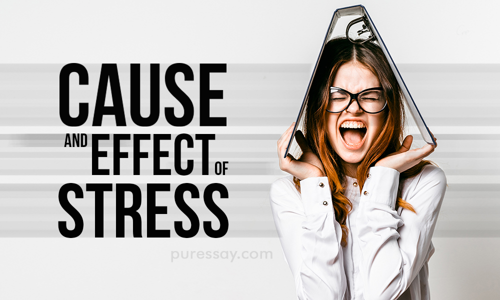 What are the causes and effects of stress